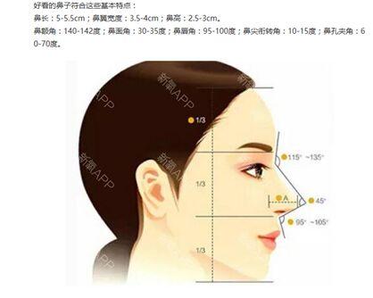泰勒软骨鼻综合打造美鼻