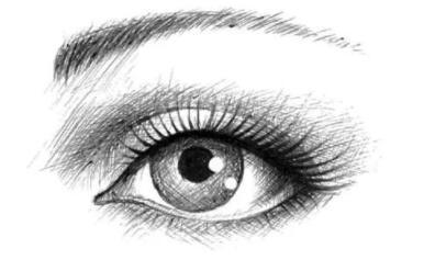 侯文明医生:有一种惊鸿一蹩 叫做双眼皮的美